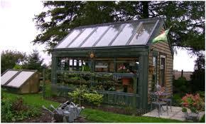 backyards small backyard greenhouse modern backyard small