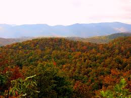 fall colors blue ridge parkway places camille