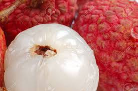 lychee fruit chinese lychee fruit with white back ground stock photo picture