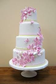 butterfly cake best 25 kids butterfly cake ideas on butterfly cakes for