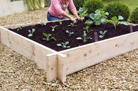lay a garden patio in pictures gardenersworld com