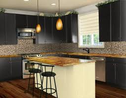 Black Paint For Kitchen Cabinets Attention Black Paint Kitchen Cabinets Designs Ideas And Decors
