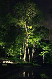 Landscape Lighting Ideas Trees Beautiful Solar Spot Lights For Trees Or Landscape Lighting Design