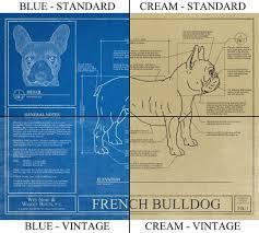 amazon com english bulldog blueprint handmade