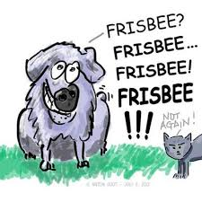 australian shepherd illustration australian shepherd cartoon u2014
