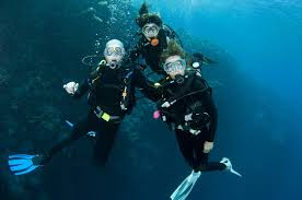 no jobs for divemasters here u0027s how you get a dive job dive in