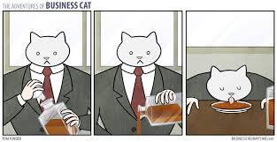 Business Cat Memes - the complete adventures of business cat comics album on imgur