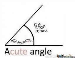 Scalene Triangle Meme - acute triangle meme triangle best of the funny meme