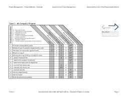 project roles and responsibilities matrix templates notebook