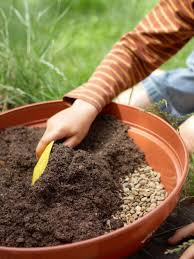 fall container gardening soil mix how to plant a cactus