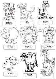 worksheet zoo animals pictionary