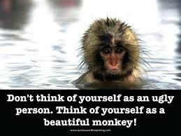 Funny Monkey Meme - funny monkey quotes empathy monkey meme best monkey memes funny