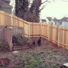 backyard dog fence home decoration ideas