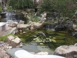 image of diy backyard pond how to build diy backyard pond