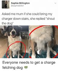 Dog Phone Meme - sophie billington asked me mum if she could bring my charger down