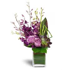 orchid flower arrangements gifts and flowers delivery lebanon dendrobium orchid jewels