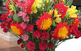 flower deliveries haworth flower shop new jersey florist and flower delivery
