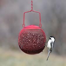 447 best bird feeders images on best bird feeders