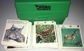 wildlife treasury cards vintage 70 s illustrated wildlife treasury green box 500