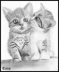 imagenes a lapiz de gatos gatitos by tatis123 on deviantart