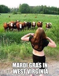 West Virginia travel meme images 3319 best adult humor images adult humor hilarious jpg