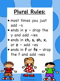 best 25 plural rules ideas on pinterest the singular noun