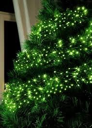 led lights for trees rainforest islands ferry