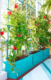 Balcony Planter Box by Rely On Plants For Privacy This Planter Box And Trellis Give