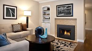 Contemporary Gas Fireplace Insert modern fireplace inserts living room contemporary with fireplace