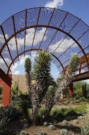 Desert Botanical Garden Restaurant Desert Botanical Garden 2018 All You Need To