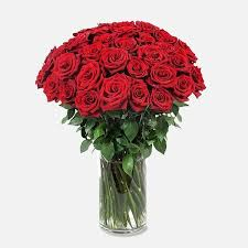 3 dozen roses 3 dozen roses manhattan flower delivery plantshed