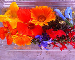 organic edible flowers farmers to you organic edible flowers