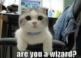 Are You A Wizard Meme - are you a wizard memerial net