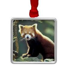 panda ornaments keepsake ornaments zazzle