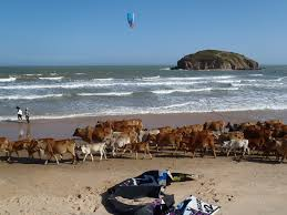 mui ne kitesurfing holidays and travel guides asia vietnam