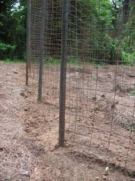 survival gardening u2013 build a zigzag bean trellis sensible survival