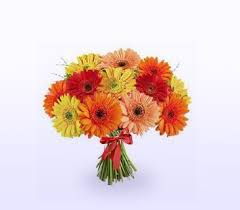 cheap same day flower delivery buy same day flower delivery of gerbera daisies country flowers