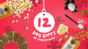 12 natural u0026 healthy christmas gifts for your dog
