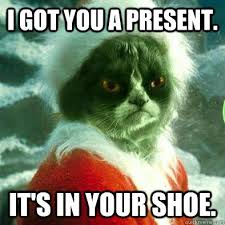 Grinch Memes - i got you a present it s in your shoe cats grumpy cat
