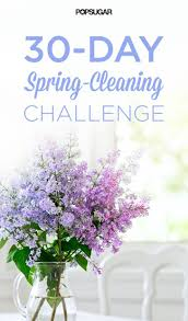 Spring Cleaning Hacks 599 Best Spring Cleaning Images On Pinterest Spring Cleaning