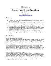 hr business consultant resume sap bi consultant resume sample sample sap basis resume elegant