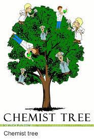 Tree Puns Chemist Tree So Much Puncom Chemist Tree Puns Meme On Me Me