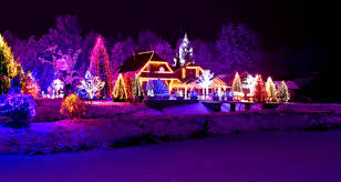 hire anointed landscaping to set up the perfect christmas light