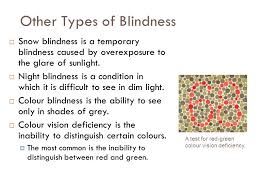What Can Cause Temporary Blindness Human Vision Correcting Focus Problems Near Sighted Vision Can