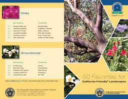 49 best california native plants water efficient landscaping rowland water district