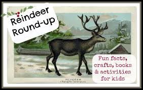 reindeer round up fun facts crafts u0026 activities edventures