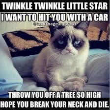 Mean Cat Memes - grumpy cat loves you bbbanal