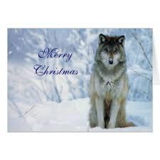 wolf christmas cards u0026 invitations zazzle co uk