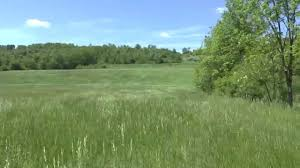 88 acre farm for sale blair county pa views of the land youtube