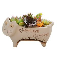 amazon com gelive 7 5 inch ceramic cat succulent planter animal